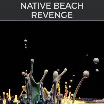 NATIVE BEACH