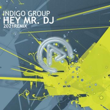 indigo group