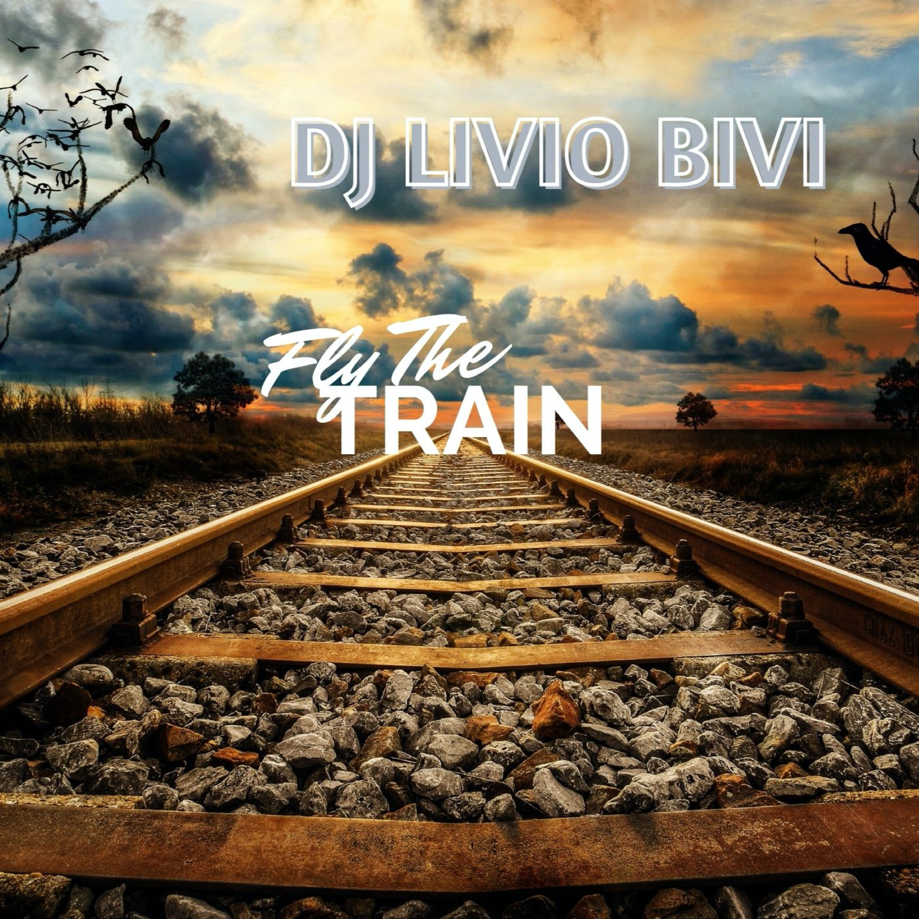 fly the train
